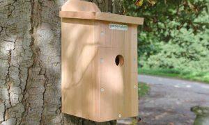 Camera Nest Box birds and wildlife