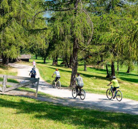 family friendly bike ride
