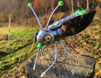 garden bug